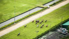 Horseracing BetStars