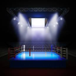 BetStars Boxing UFC Bets